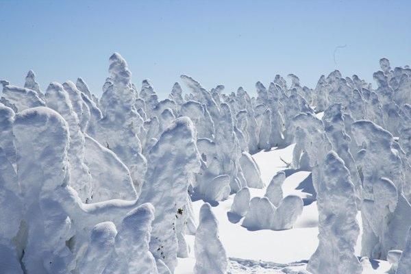 樹氷(スノーモンスター)